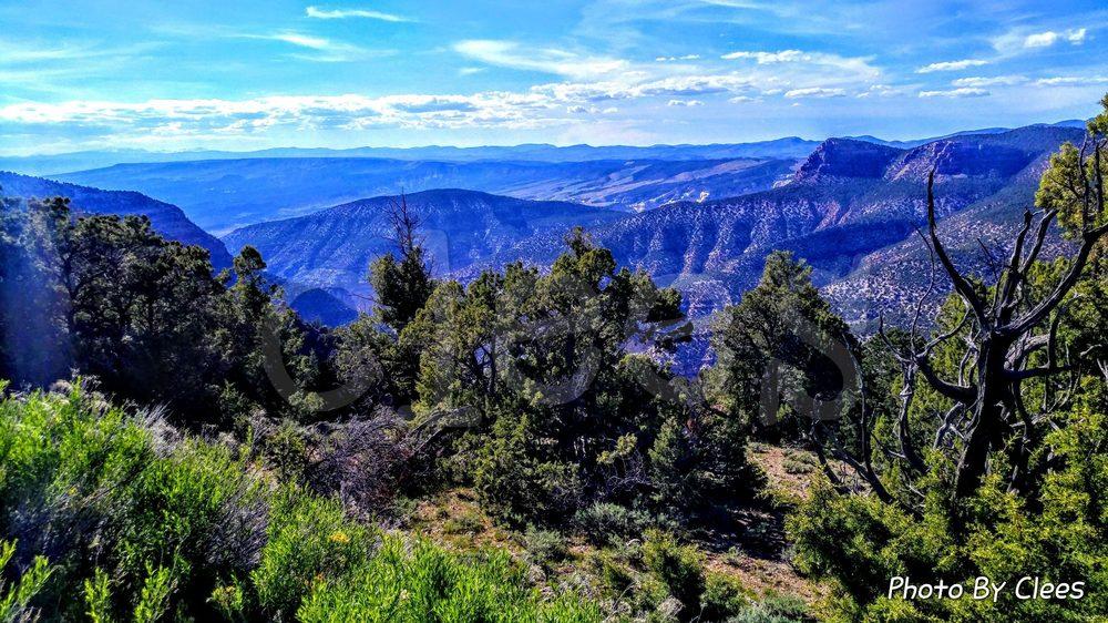Dinosaur National Monument: 4545 Hwy 40, Dinosaur, CO