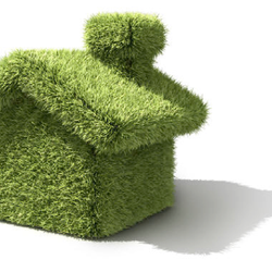 tom s gardening 11 beitr ge g rtner 8868 kelsey dr elk grove ca vereinigte staaten. Black Bedroom Furniture Sets. Home Design Ideas