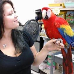 NJ Exotic Birds - 79 Photos - Pet Stores - 114 Rt 46 E, Saddle Brook