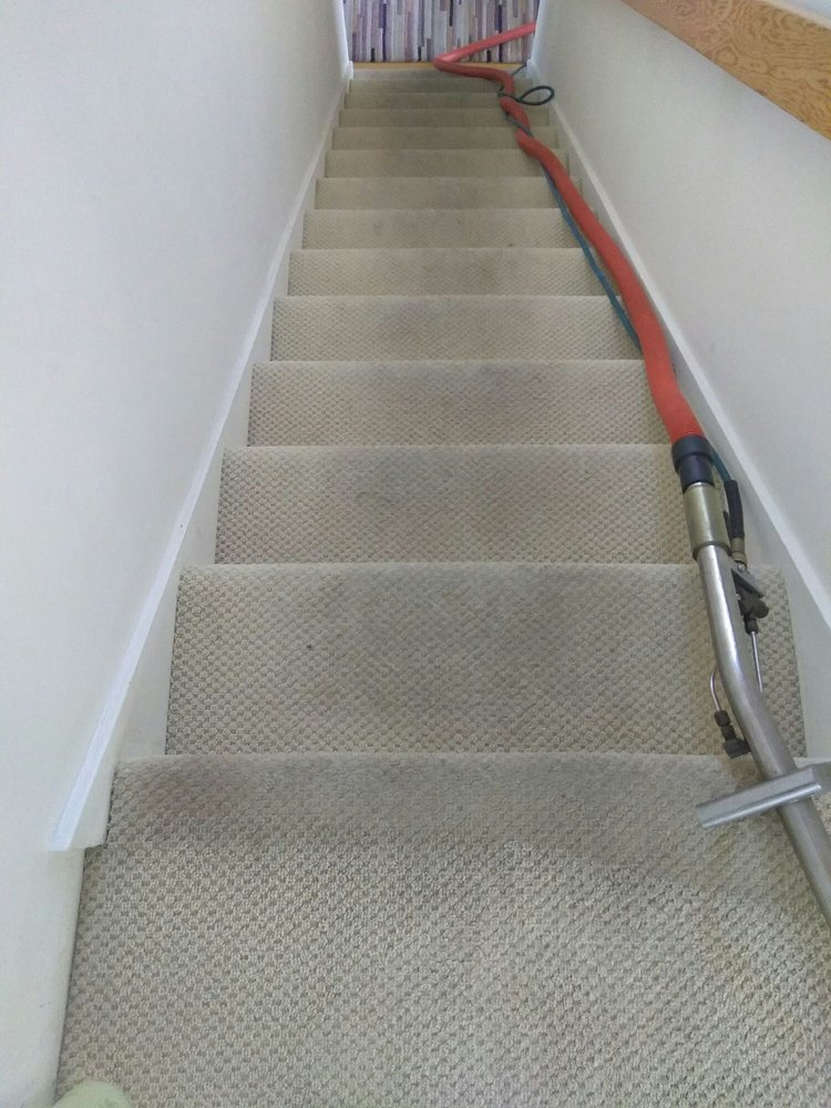 Dani's Carpet & Cleaning Services