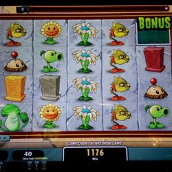 Pioneer hotel and gambling hall reviews money talks play for pay