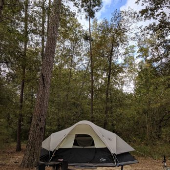 Charmant Photo Of Lake Livingston State Park   Livingston, TX, United States. Camp  Side