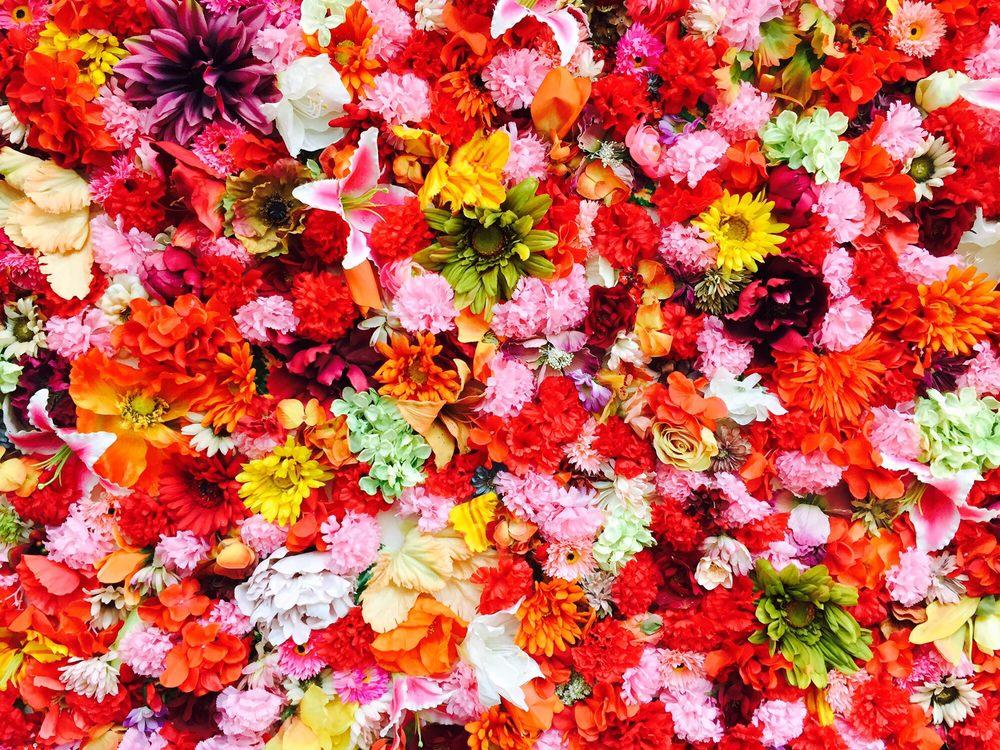 Flowers at Frida Kahlo exhibit - Yelp