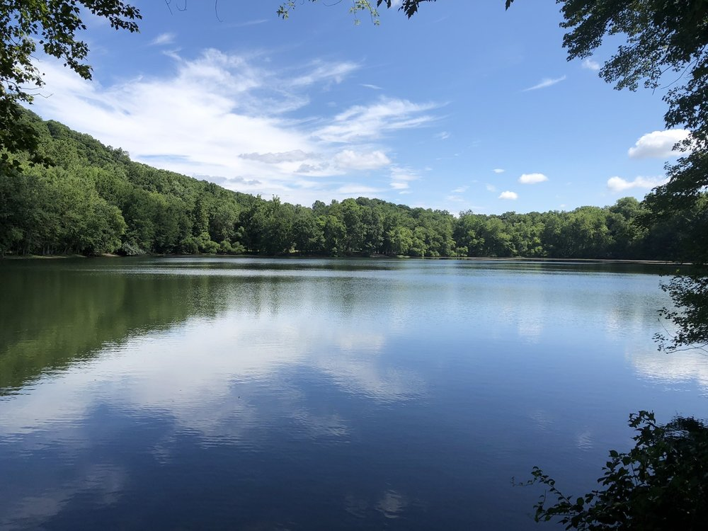 Ramapo Valley County Reservation: 608 Ramapo Valley Rd, Mahwah, NJ