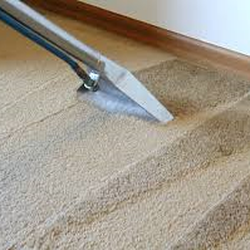North Hills Carpet Cleaning Carpet Cleaning 9000