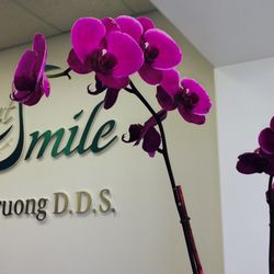 Timmy H Truong DDS DentSmile Dental Corporation 56 Photos