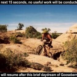 Utah Mountain Biking - Bikes - 169 W Main St 597b8be4b