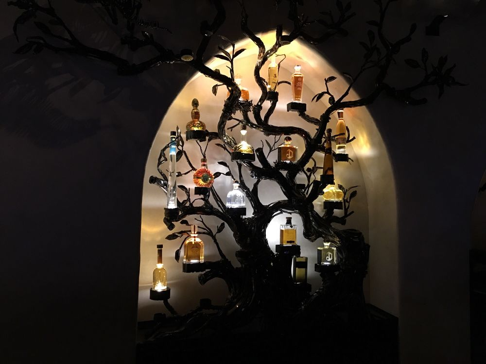 Tequila tree at the Javier\'s!!! - Yelp
