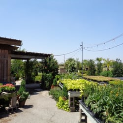 Beautiful Photo Of Cristinau0027s Garden Center   Dallas, TX, United States