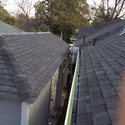 RT Trees   30 Photos U0026 41 Reviews   Tree Services   Roslindale ...