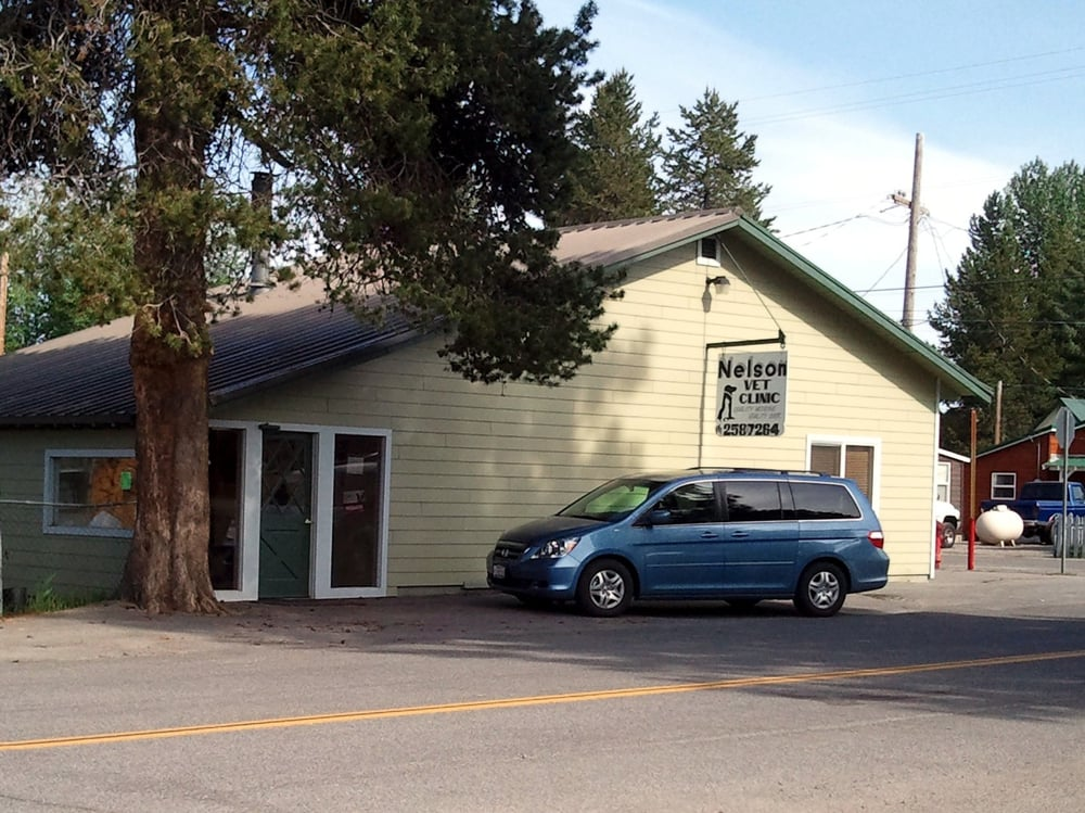 Nelson Veterinary Services: 131 Stone Ave, Chester, CA