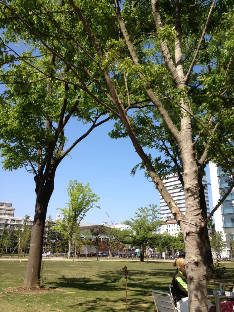 Nakano Central Park