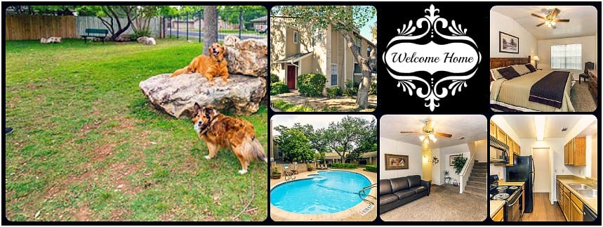 WE LOVE OUR PET RESIDENTS, COME SEE WHAT ALL THE BARK IS ABOUT AT ...