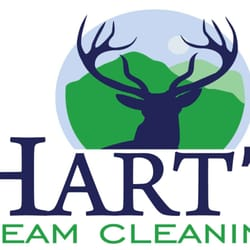 Carpet Cleaners Austin  Photo of Hart's Carpet Cleaning - Austin, TX, United States