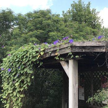 San Antonio Botanical Garden 949 Photos 131 Reviews Botanical Gardens 555 Funston Pl