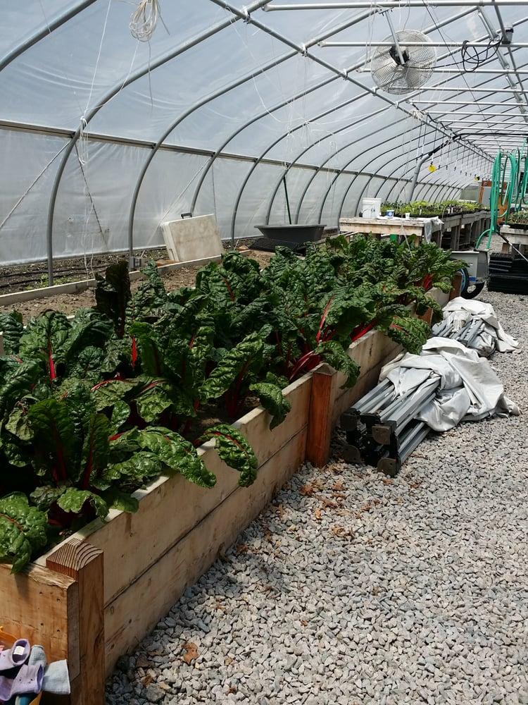 Revision Urban Farm: 42 Fabyan St, Dorchester Center, MA