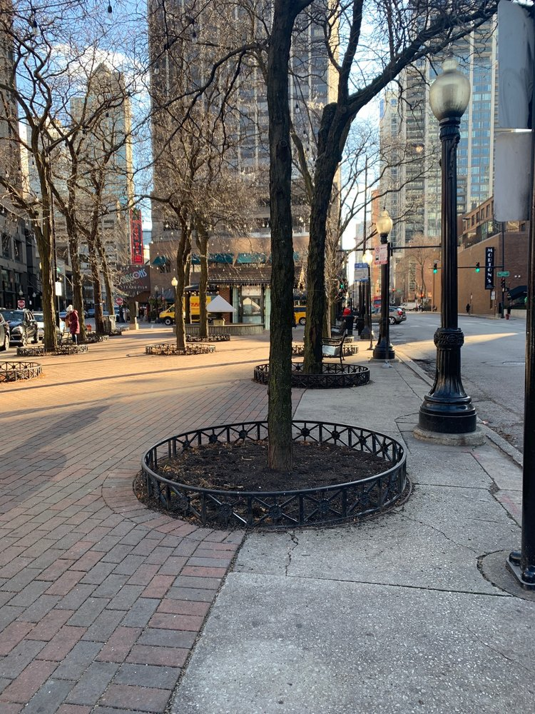 Mariano Park: 1031 N State St, Chicago, IL