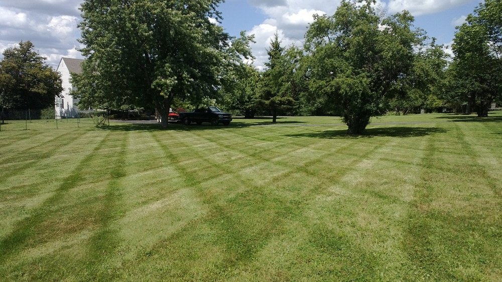 Countryside Lawn and Landscape: 10493 Fuller Rd, Adams Center, NY