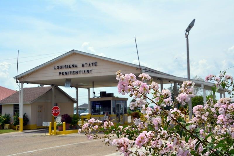 Angola Musum - Louisiana State Penitentiary: 17544 Tunica Trace, Angola, LA