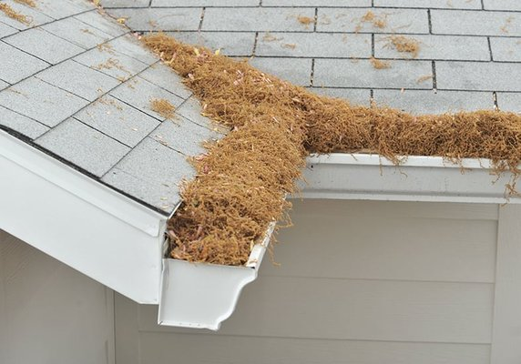 Gutter Helmet Of The Pikes Peak Region 13395 Voyager Pkwy Suite 130 Colorado Springs Co Gutters Downspouts Mapquest
