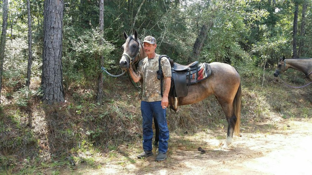 Horse Haven: 334 H Burge Rd, Poplarville, MS