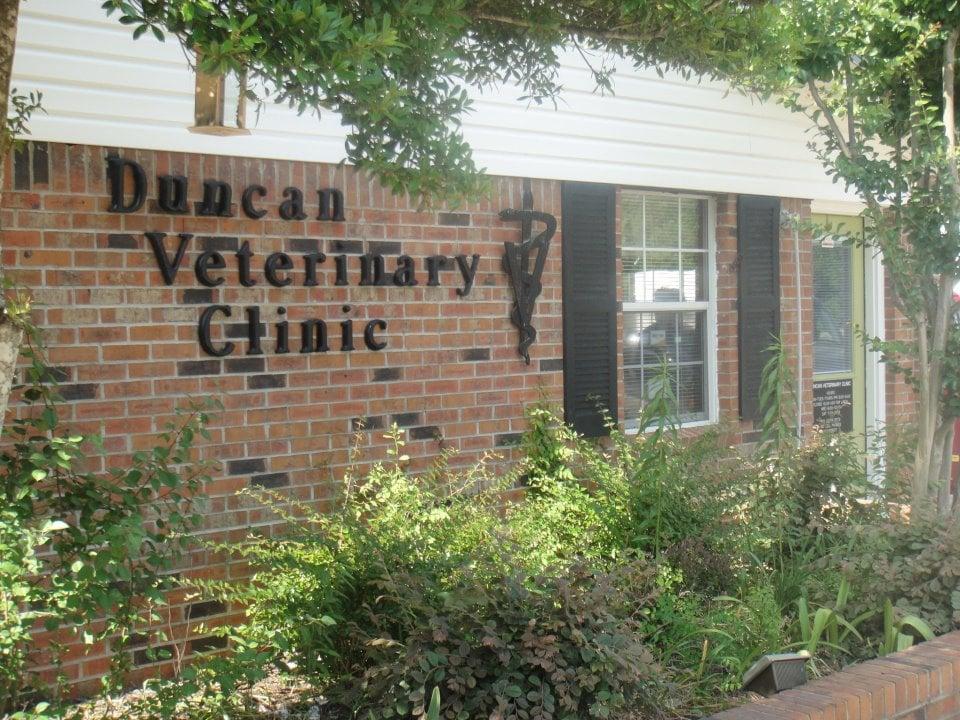 Duncan Joe L Dr Jr: 3387 E Roane Ave, Eupora, MS