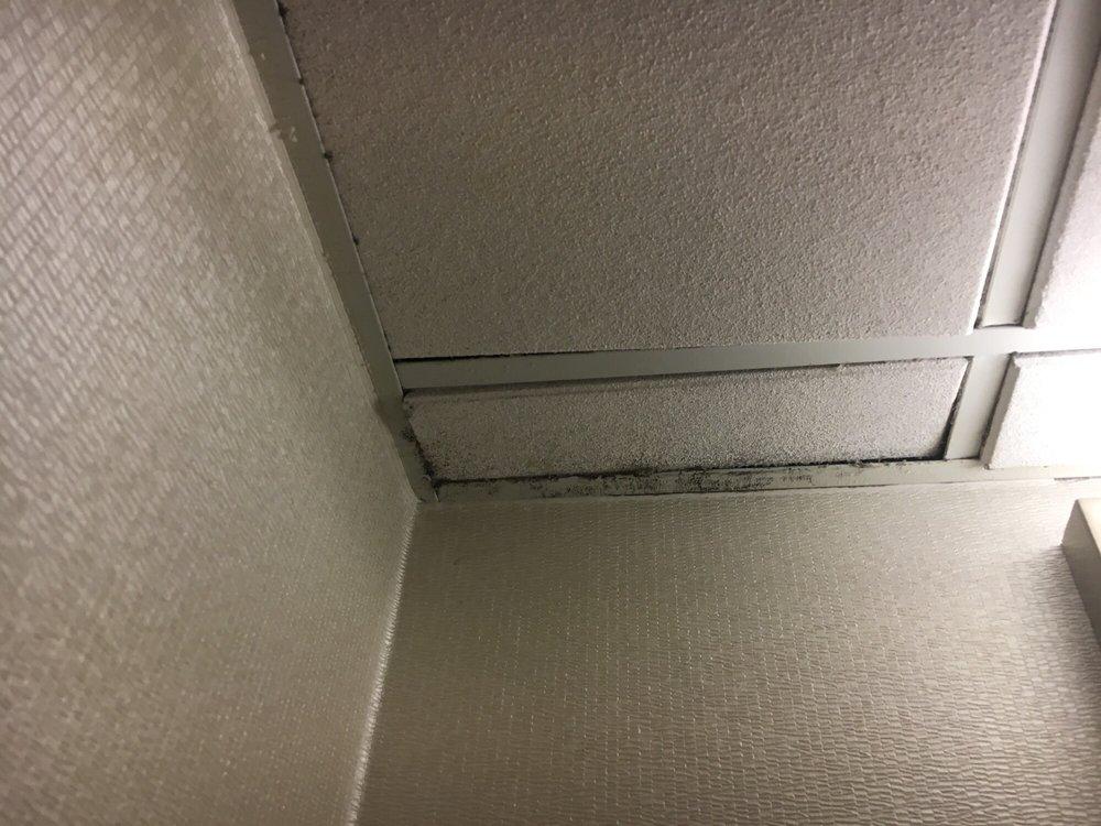 Photo Of Hilton Bellevue Wa United States Black Mold On Ceiling