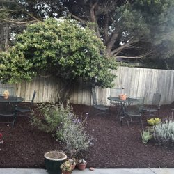 Photo Of Dreamers Garden   Redwood City, CA, United States. My Backyard Is