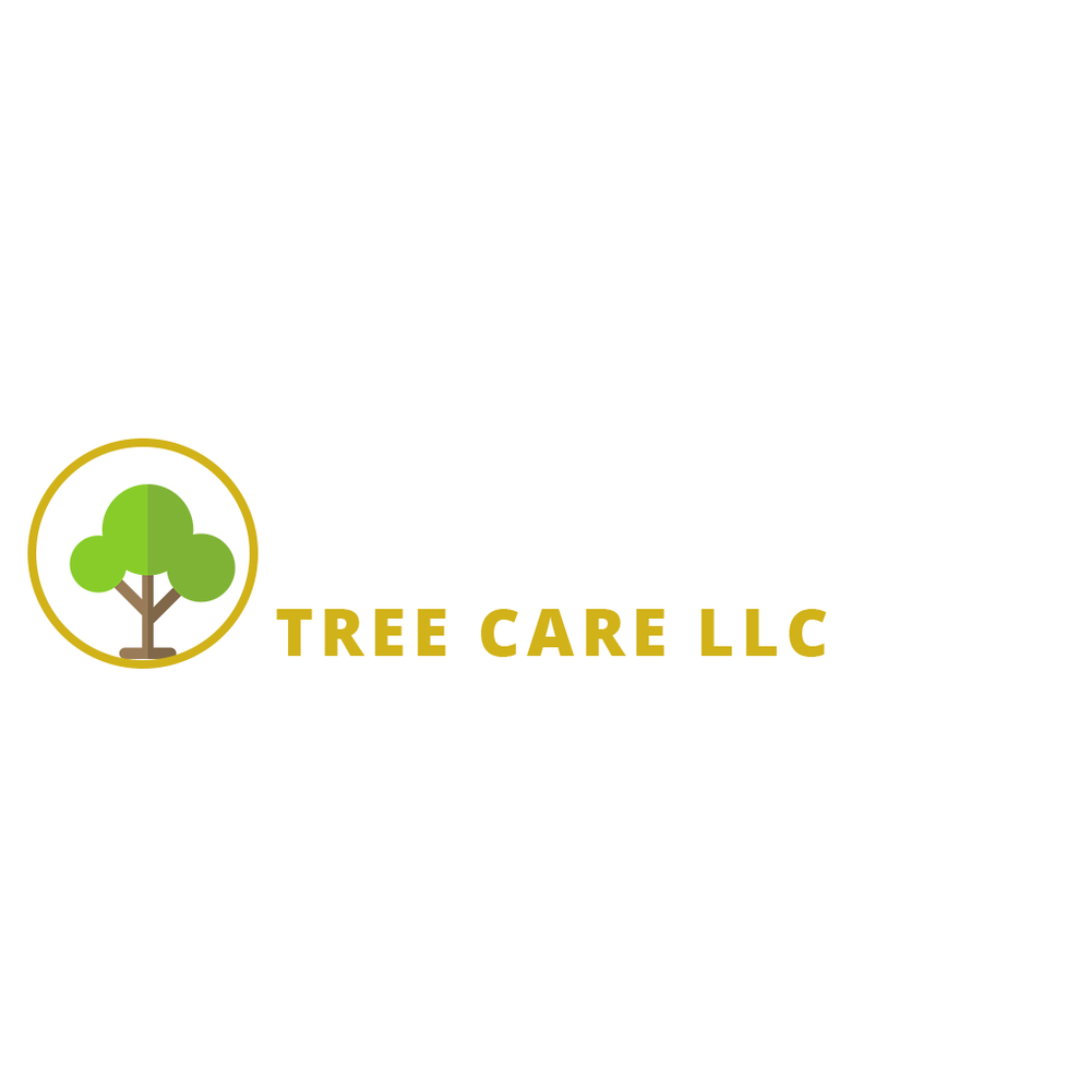 Holloway's Tree Care: 3152 Glen Springs Rd, Drummonds, TN