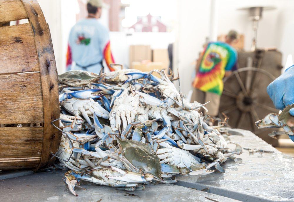 Mr Bill's Fresh Seafood: 430 Harrisburg Pike, Lancaster, PA