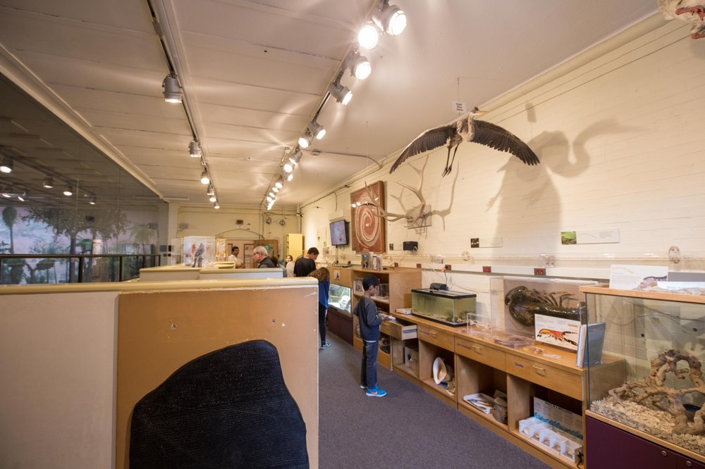 Social Spots from Peabody Museum of Natural History