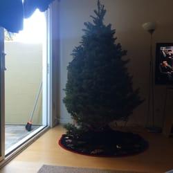 Mr. Jingles Christmas Trees - CLOSED - Christmas Trees - 2665 5th ...