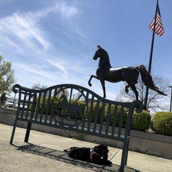 Kentucky Horse Park Golf Cart Html on