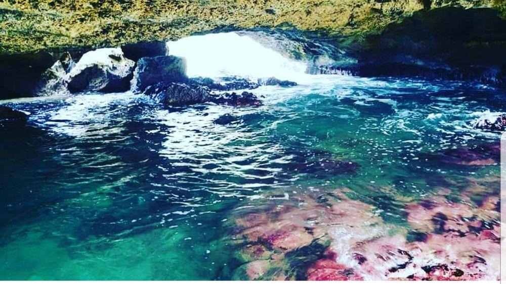 Cueva de las Golondrinas: Manatí, PR
