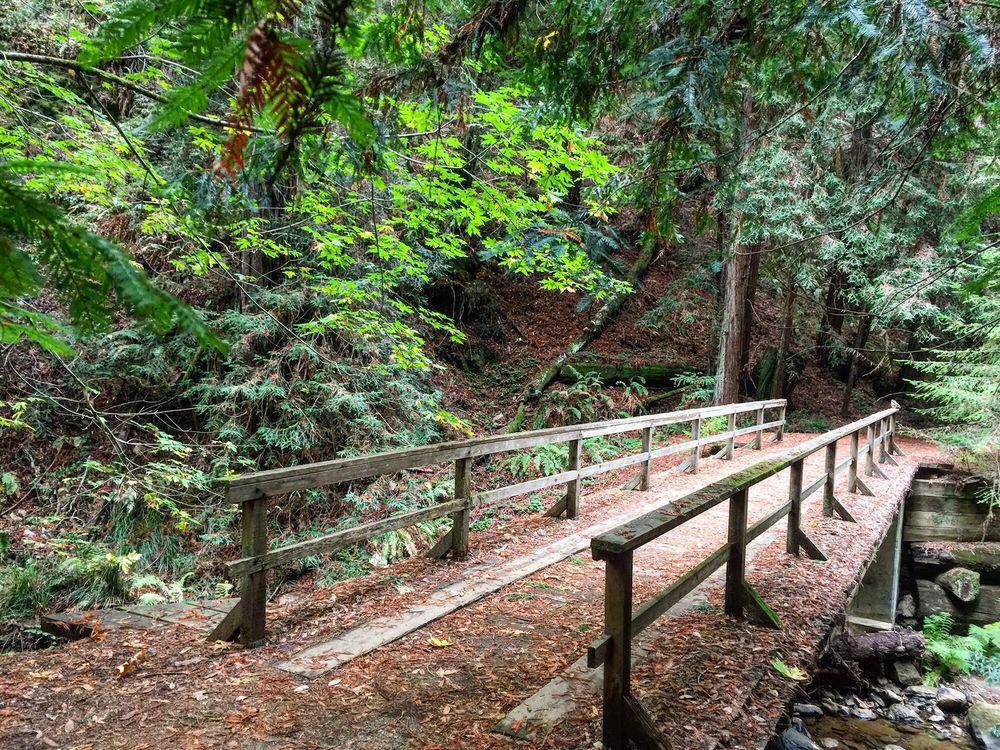 Skyline to the Sea Trail: Rancho Del Oso State Park, Davenport, CA