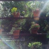 Peace Awareness Labyrinth Gardens 305 Photos 56 Reviews Meditation Centers 3500 W