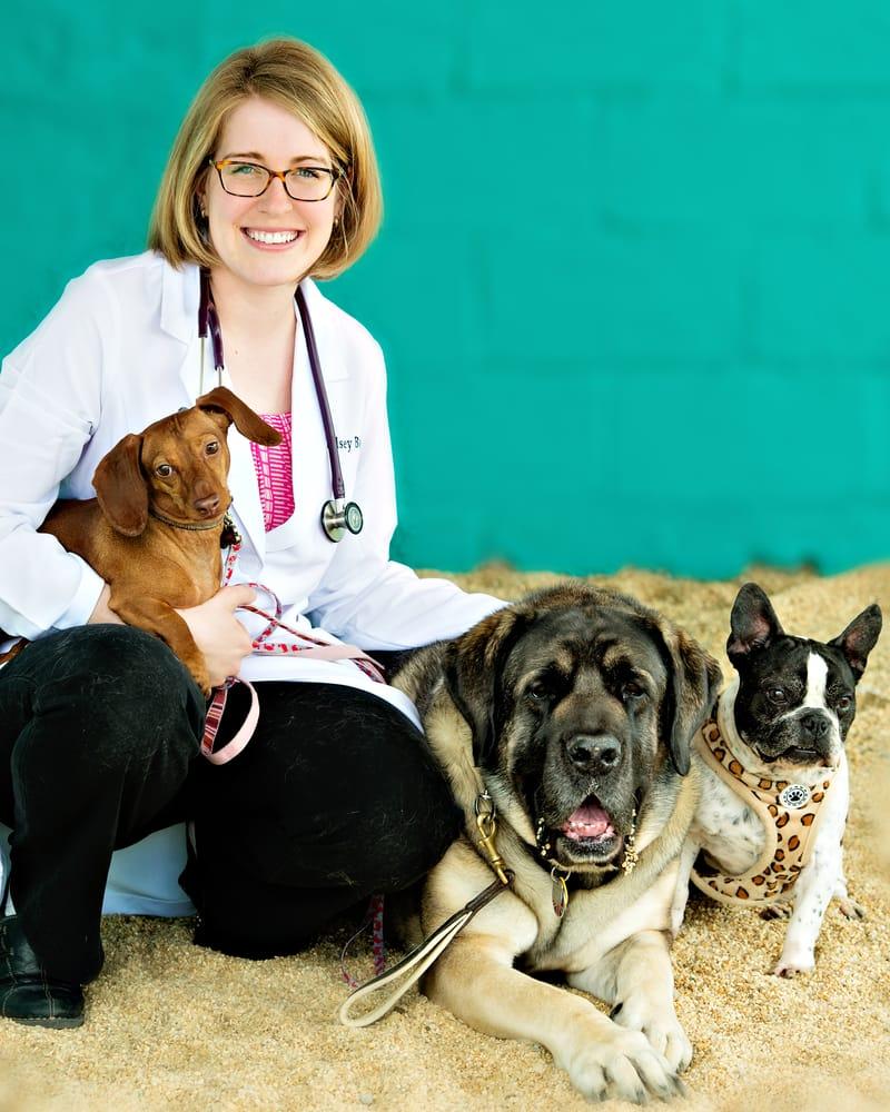Merrifield Animal Hospital
