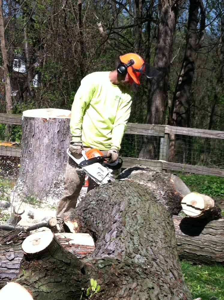 Sidelines Tree Service