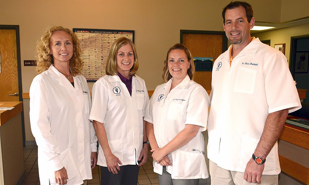 Grand Rapids Veterinary Clinic: 405 SE 13th St, Grand Rapids, MN