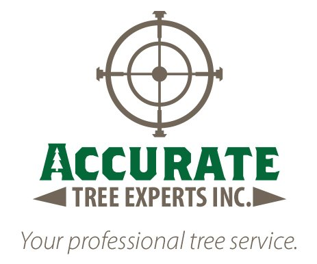 Accurate Tree Experts: Vancouver, WA