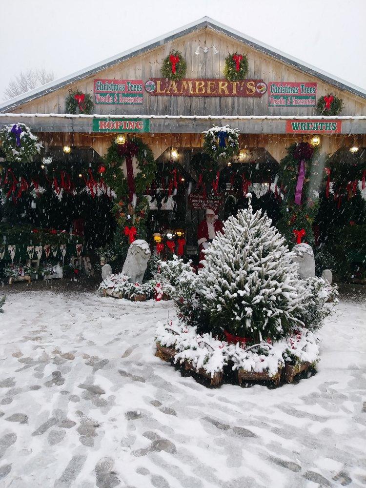 Lamberts Garden Center: 1 Cape Rd, Mendon, MA