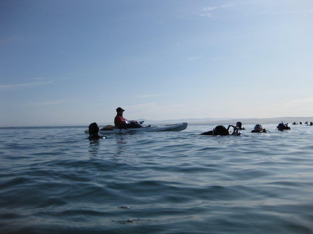 San Francisco Dive Academy / SF Parks and Rec SCUBA: 600 Arguello Blvd, San Francisco, CA