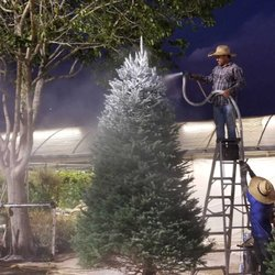 Photo Of Madison Gardens Nursery Spring Tx United States Get Your Christmas