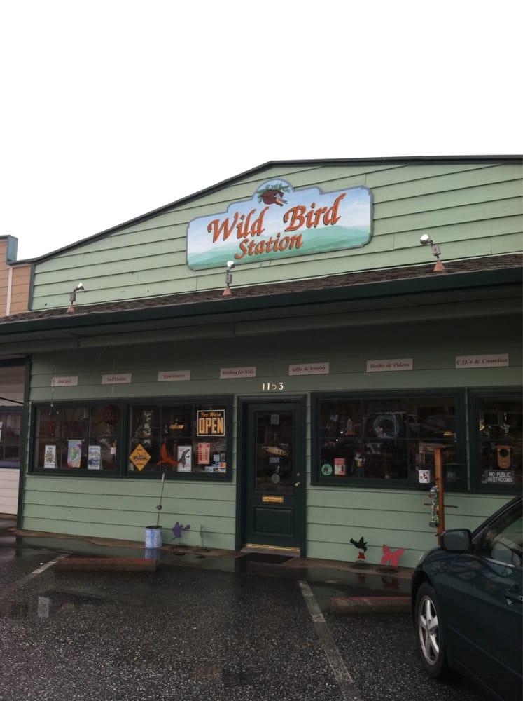 Wild Bird Station