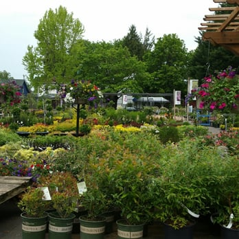 Grays Garden Center Nurseries Gardening 777 W 6th Ave
