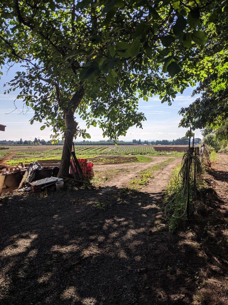 Choy and Kae Family Farm: 4270 Cordon Rd NE, Salem, OR