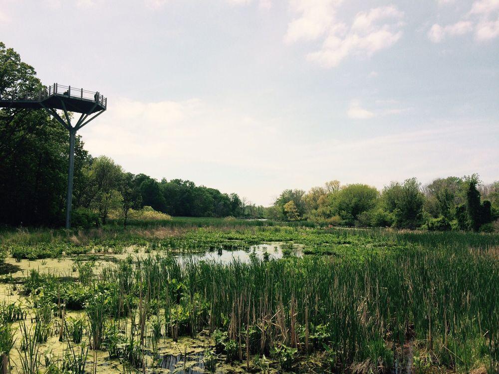 Galien River County Park: 17424 Red Arrow Hwy, New Buffalo, MI