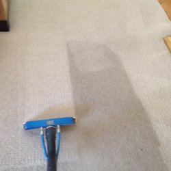 Los Angeles Carpet Cleaning 268 Photos Amp 473 Reviews