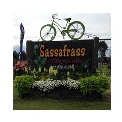Sassafrass Garden & Gifts: 1953 S Morey Rd, Lake City, MI