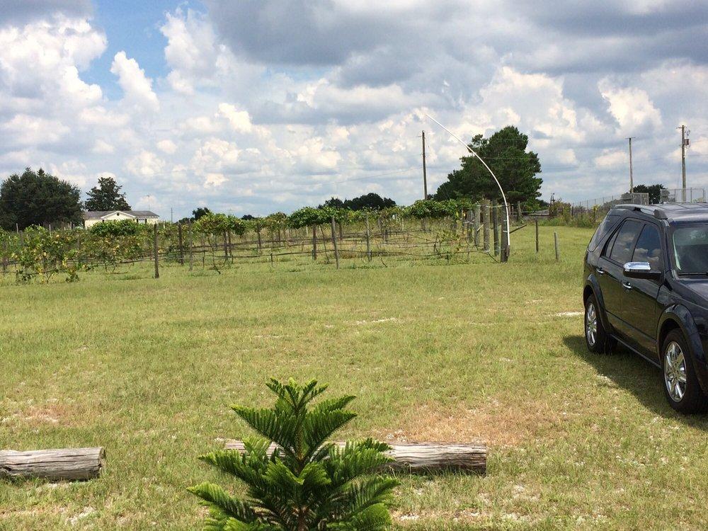 Hutchinson Farm Winery: 8061 Stone Rd, Apopka, FL